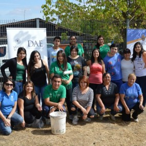 mechoneo solidario chillán 2015
