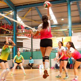 olimpiada-santotomas-voleibol-2016-6